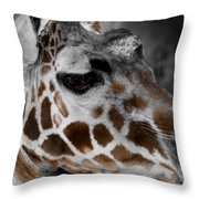 Black  White And Color Giraffe Throw Pillow