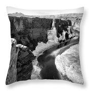 Black White Colorado River  Throw Pillow