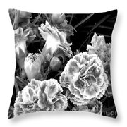 Black White View  Throw Pillow