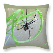 Black Widow Wheel Throw Pillow by Al Powell Photography USA