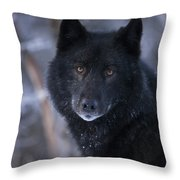 Black Wolf Portrait Throw Pillow