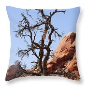 Black Wood Throw Pillow