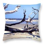 Blackbeard Island Beach Throw Pillow by Thomas R Fletcher