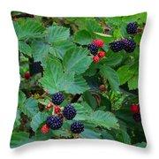 Blackberries 1 Throw Pillow