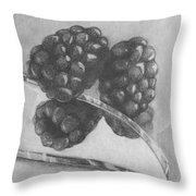 Blackberries On Glass Throw Pillow