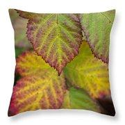 Blackberry Autumn Throw Pillow