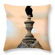 Blackbird And A Coral Sky Throw Pillow