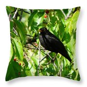 Blackbird In The Cherry Tree Throw Pillow