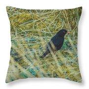 Blackbird In The Undergrowth Throw Pillow