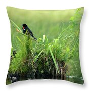 Blackbird Island Throw Pillow
