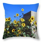 Blackeyed Susans And Adobe Throw Pillow