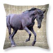 Blackhorse Poetry Throw Pillow