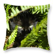 Blackie In The Ferns Throw Pillow