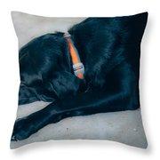 Blackiecharlie 1 Throw Pillow
