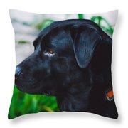 Blackiecharlie IIi Throw Pillow
