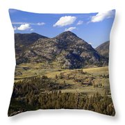Blacktail Road Landscape 2 Throw Pillow by Marty Koch