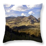Blacktail Road Landscape Throw Pillow