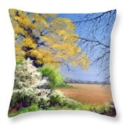 Blackthorn Winter Throw Pillow