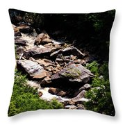 Blackwater Canyon #4 Throw Pillow