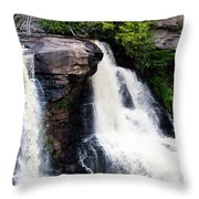 Blackwater Falls #4 Throw Pillow