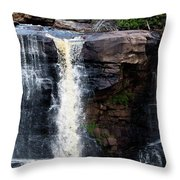 Blackwater Falls #5 Throw Pillow