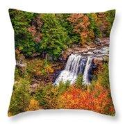 Blackwater Falls Wv Throw Pillow