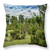 Blackwater Swamp Throw Pillow