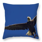 Blad Eagle In Flight-signed- #2699 Throw Pillow