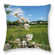 Bladder Campion On Stone Wall Throw Pillow