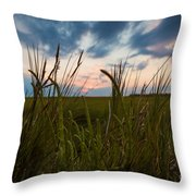Blades Of Sunset Throw Pillow