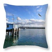 Blaine Crab Square Crop Throw Pillow by Christine Burdine