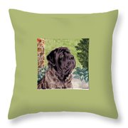 Blake Throw Pillow