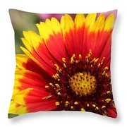 Blanket Of Petals  Throw Pillow