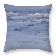 Blanketed Beauty Throw Pillow