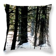 Blanketed In Snow Throw Pillow
