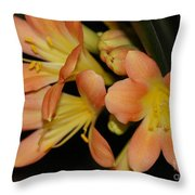 Blast Of Sunshine Throw Pillow