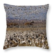 Blast Off Bosque Del Apache Throw Pillow