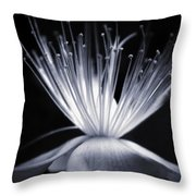 Blaze Throw Pillow