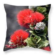 Blazing Blooms Of Ohia Flowers Throw Pillow