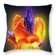 Blazing. Throw Pillow