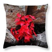 Blazing Maple Throw Pillow