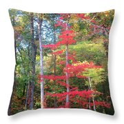Blazing Red Throw Pillow