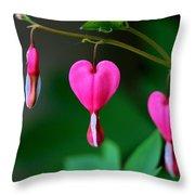 Bleeding Heart 2 Throw Pillow