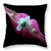 Bleeding Heart 2011-4 Throw Pillow