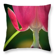 Bleeding Heart Macro Throw Pillow