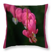 Bleeding Hearts Flowers Throw Pillow