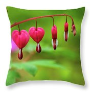 Bleeding Hearts - Lamprocapnos-spectabilis Throw Pillow