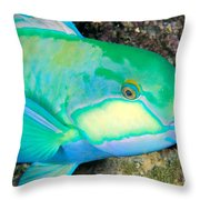 Bleekers Parrot Fish Throw Pillow
