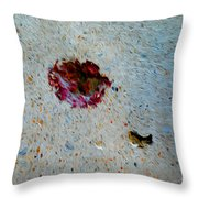 Ablation Throw Pillow