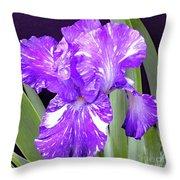 Blended Beauty - Bearded Iris Throw Pillow
